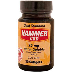 Hammer Nutrition Hammer Hemp CBD Softgels - 25mg, 30 Softgels