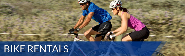 Bike Rentals Hybrid Cruiser