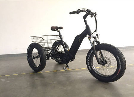 Pacific E-bike Pacific E-Bike Trike Jazz