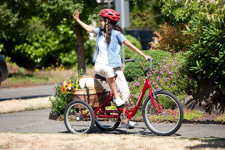 Torker 3 Wheel Adult Trikes! Walt's Cycle, Sunnyvale, California