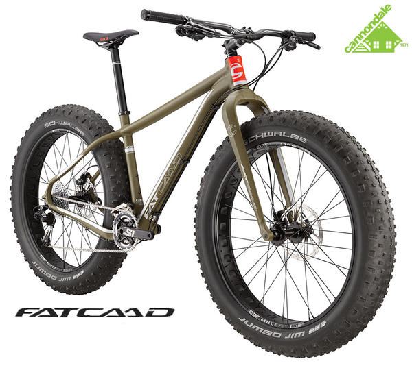 Goodale's Bike Shop Rental Request: FAT CAAD 2