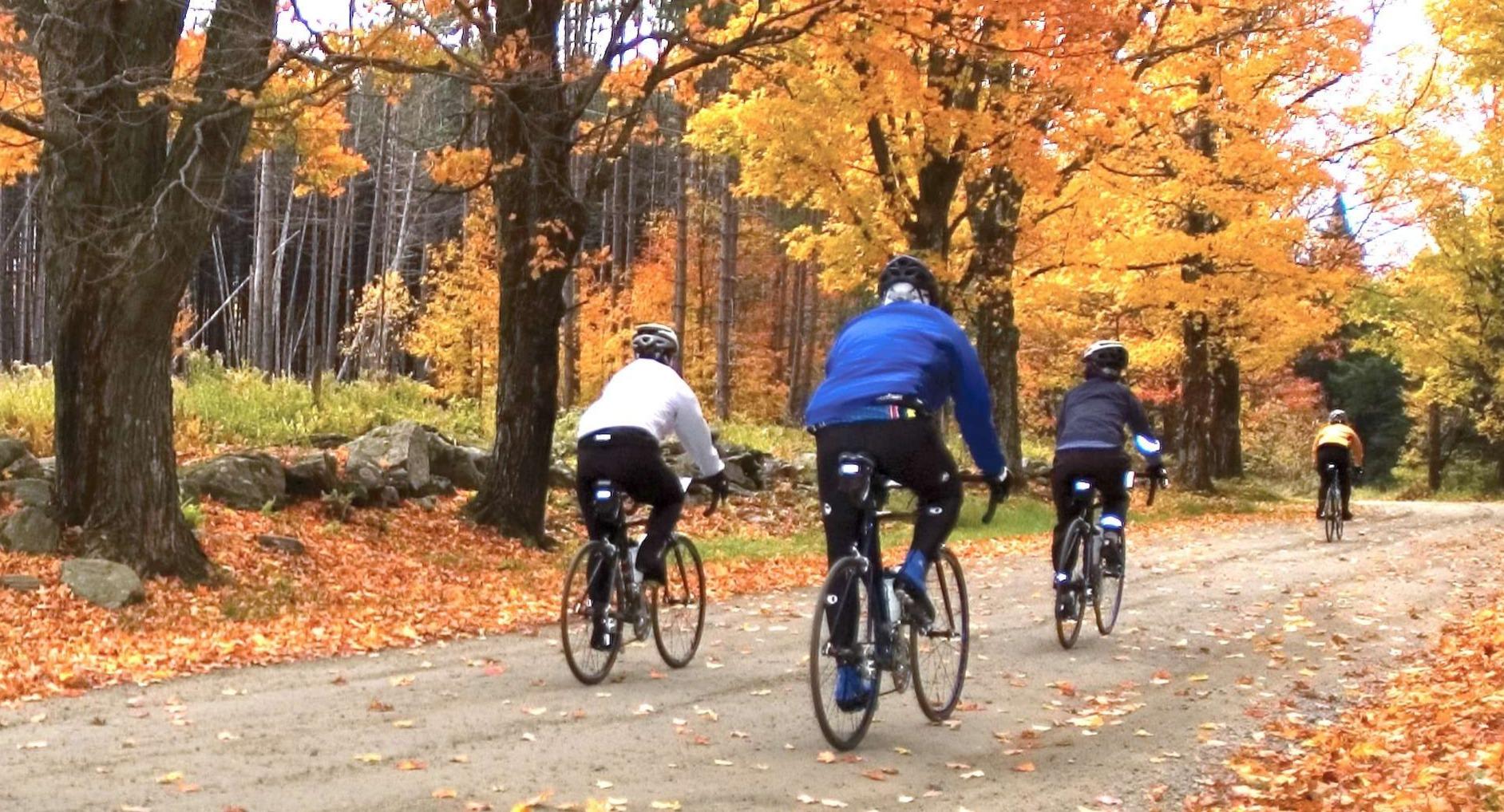 Mountain Biking at Hale