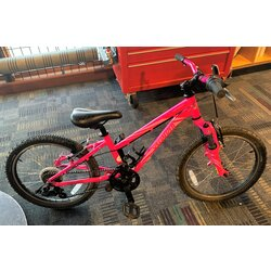Specialized USED Specialized Hotrock 20-inch 6-speed Pink
