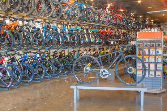 store interior with many bikes on display racks