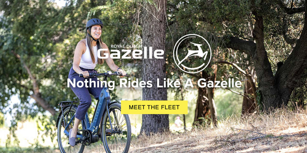 Gazelle Electric Bikes