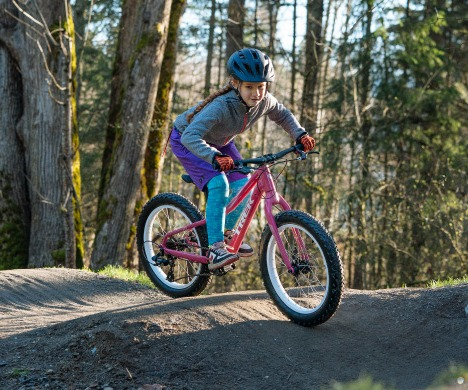 20 Inch Bikes