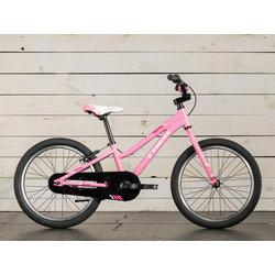 Towpath Bike USED Precaliber 20 Girl's