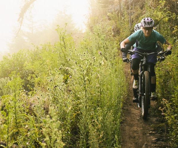 Mountain Bikes - Morgantown
