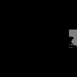 Salsa bikes logo link to catalog