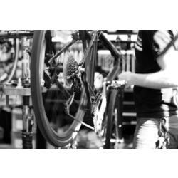 Kelowna Cycle Juvenile bike basic tune