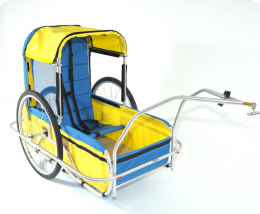 CycleTote Large Utility to Special Needs conversion