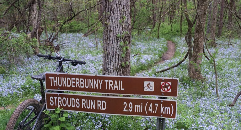Thunderbunny Trail at Strouds Run State Park
