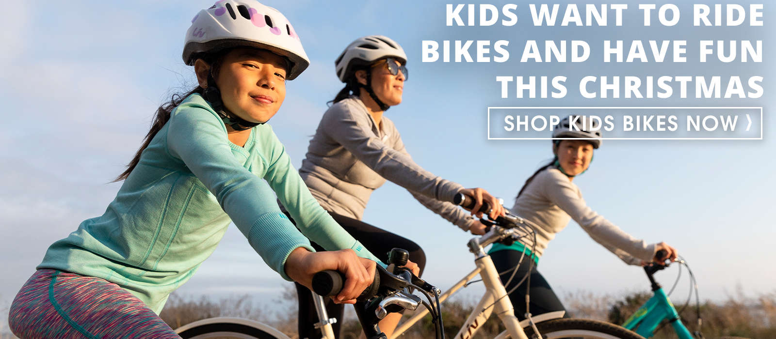 Kids Bikes for Christmas