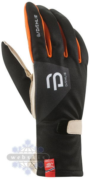 Bjorn Daehlie Raw Fast Glove