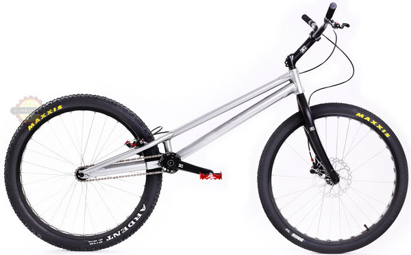 "Echo Mark 5 26"" Bike"