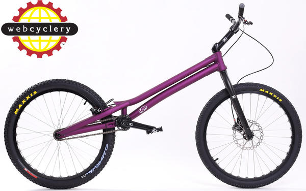 "GU 24"" Bike Color: Purple"