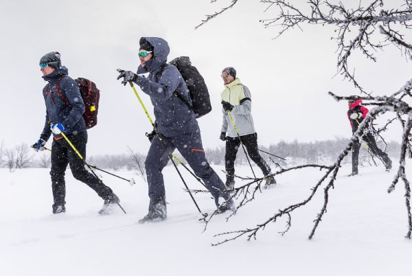 three skiers on cross country skiing track