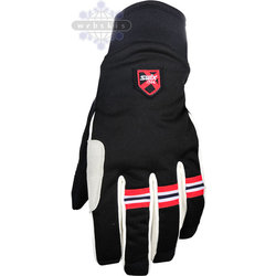Swix Banner Men's Glove