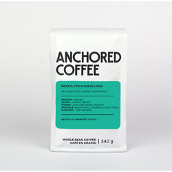 Anchored Coffee Mexico, Finca Nueva Linda Filter