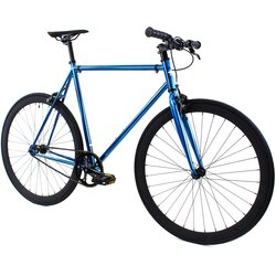 Golden Cycles Blue Jay