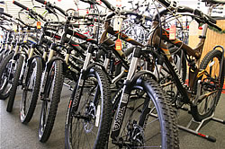 Specialized Mountain Bikes at The Bicycle Shop