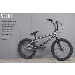 Sunday Scout 2021