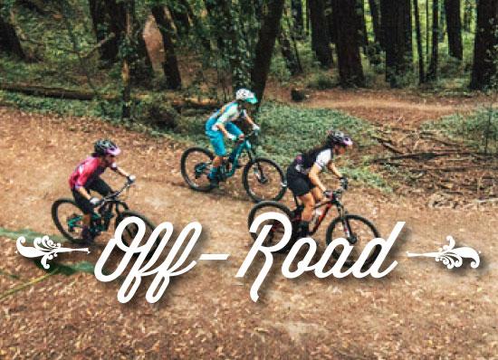 Liv Mountain Bikes for Women at Trailhead Cycling Champlin MN