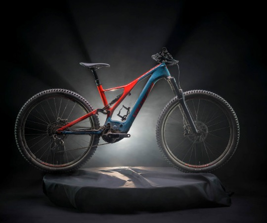 Giant and Specialized Bikes