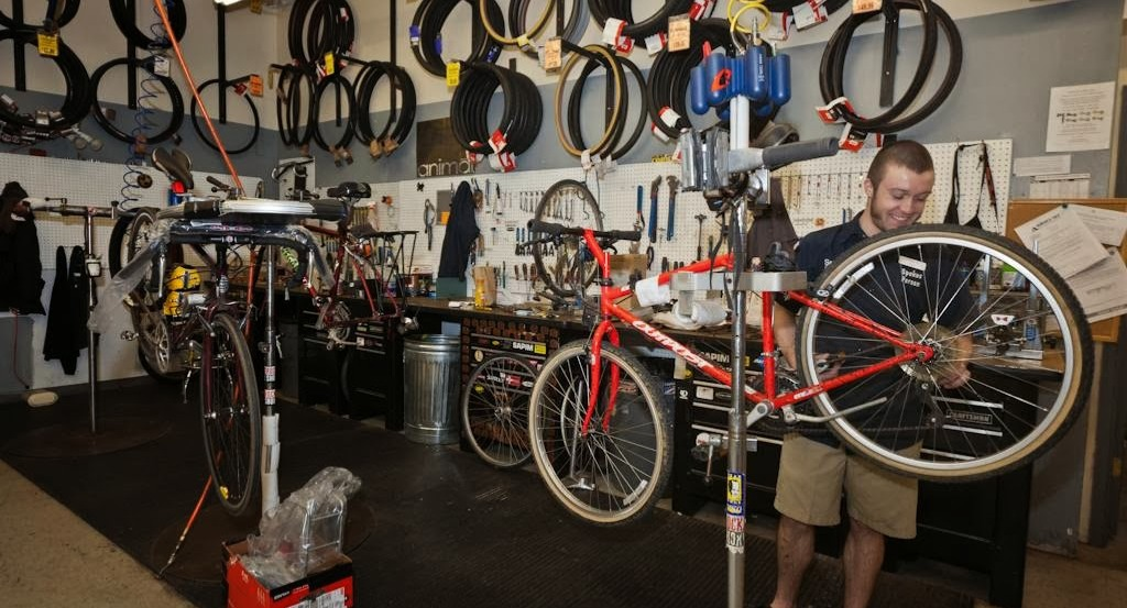 bike repair fit services belle view
