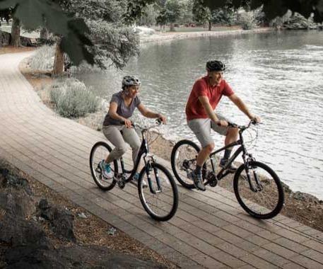 comfort bikes toledo