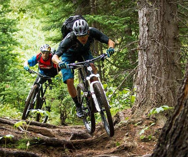 Shop Mountain Bikess- Odessa, FL Bexley, FL