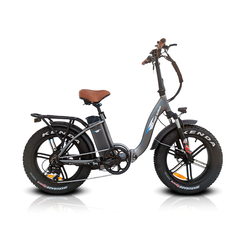 Bagibike B10 Fat/M Premium Low Step