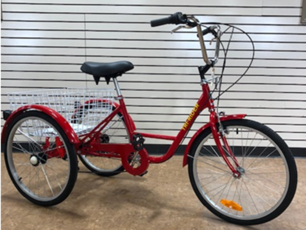 """Belize Bicycle Company Tri-Rider 24"""""""