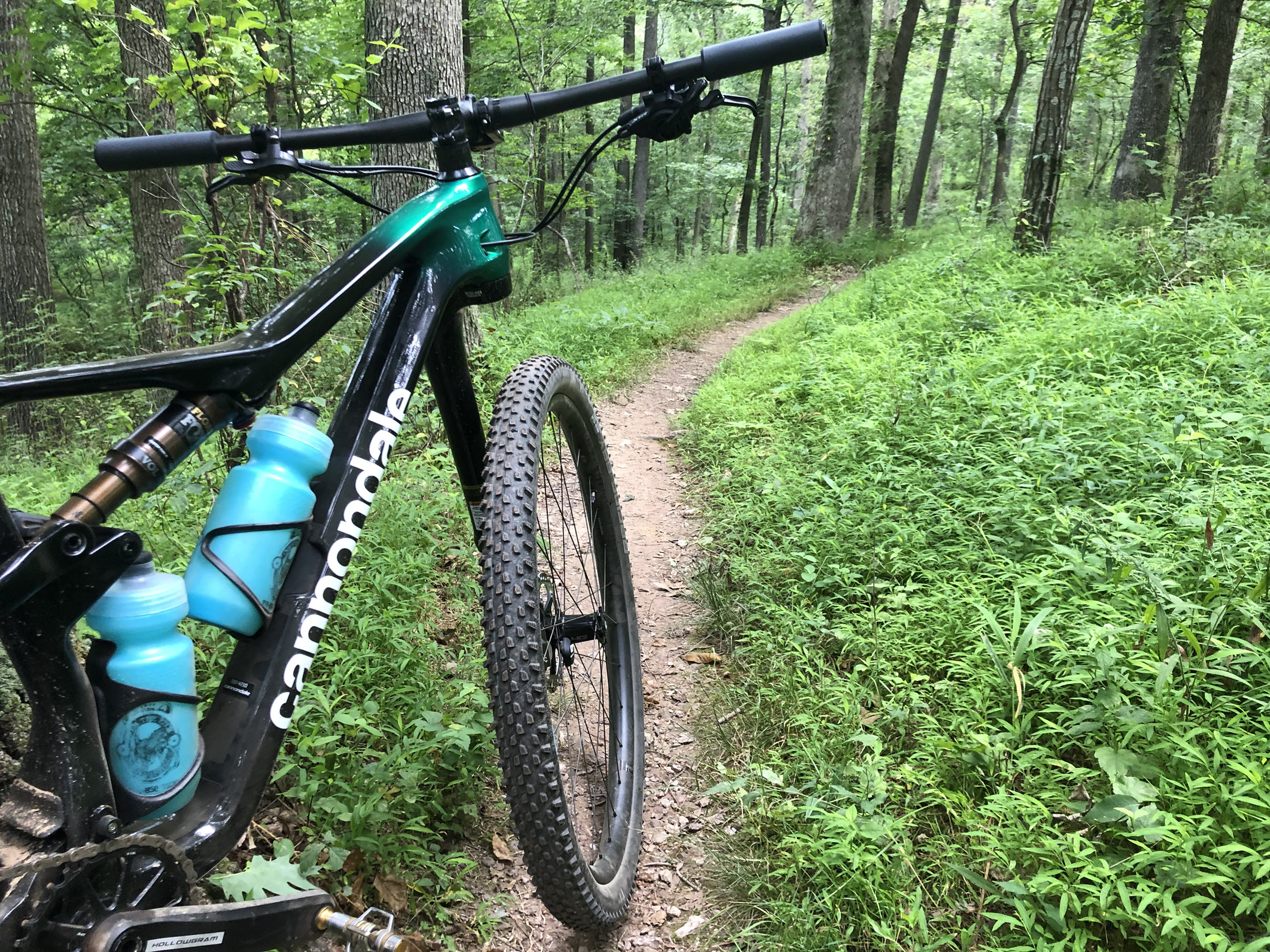 Cannondale Scalpel HiMod1 on the trail