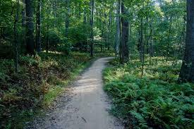 Cross County Trail Fairfax Va