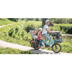 Tern Tern GSD Electric Folding Cargo Bike