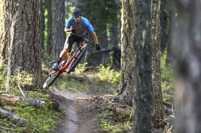 mountain biker riding singletrack trail