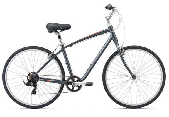 Hybrid rental bikes