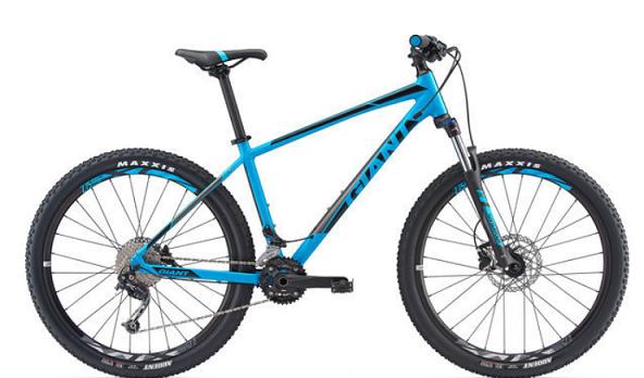Mountain rental bike