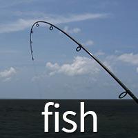 fishing product catalog