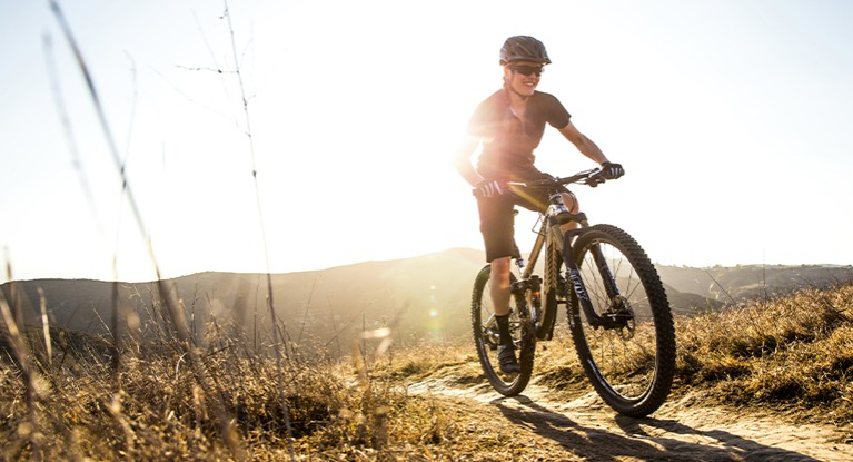 Field Guide to Bike Buying