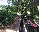 West Orange Trail - Winter Garden