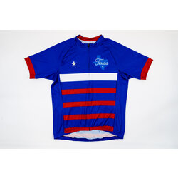 Richardson Bike Mart RBM Lone Star Jersey
