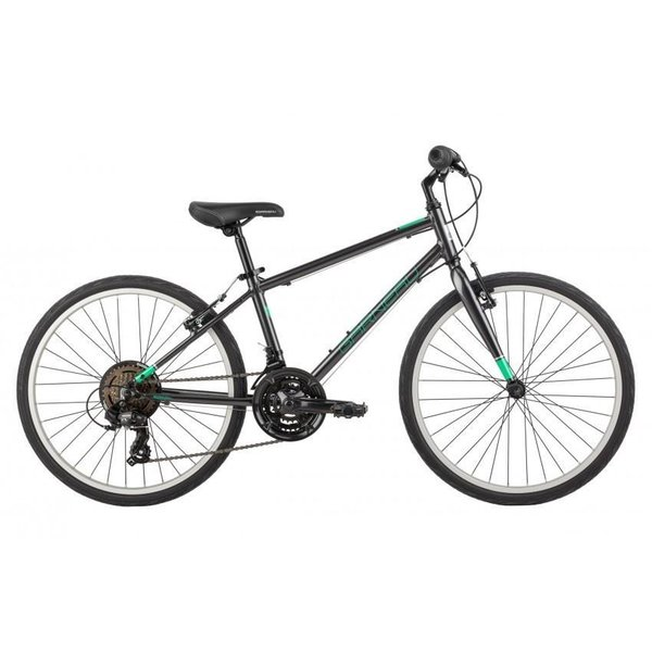 "Garneau Petite Queen 242 24"" Kids Bike"