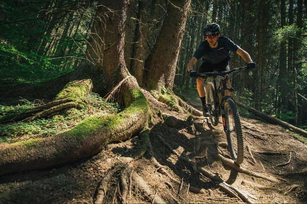 Mountain biker riding over roots on dirt trail