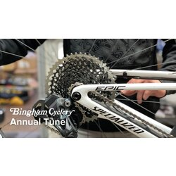 Bingham Cyclery Annual Bike Service