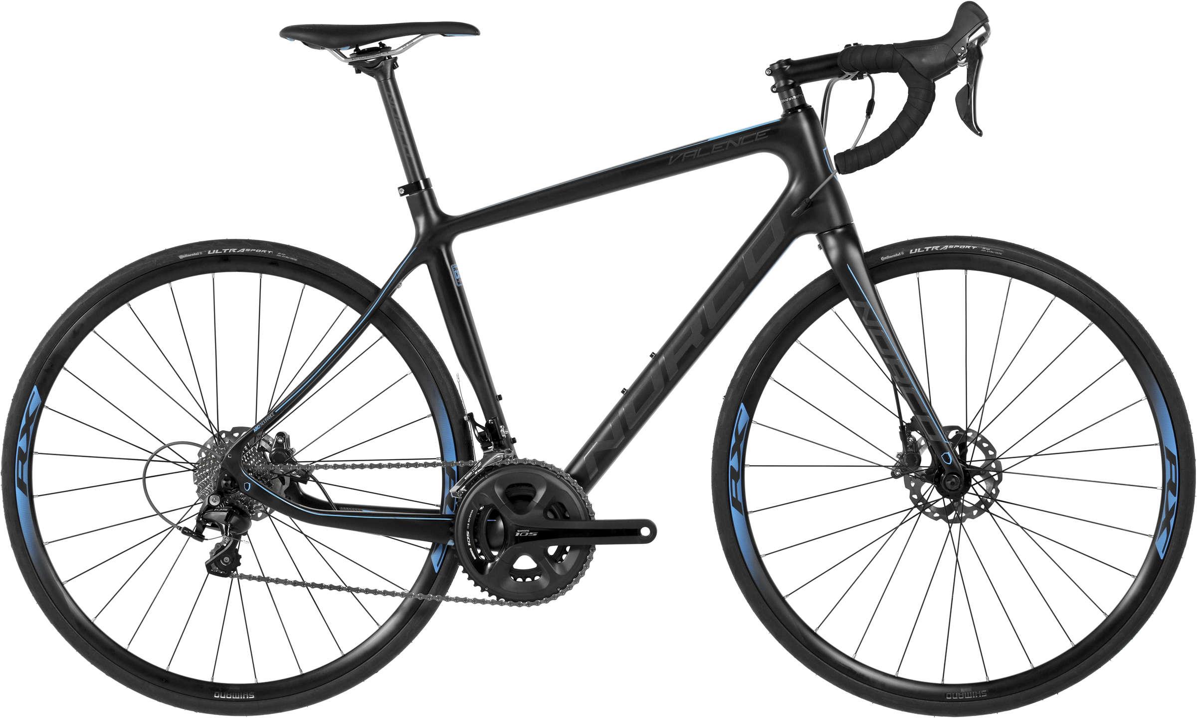 Premium Road Bike Rental