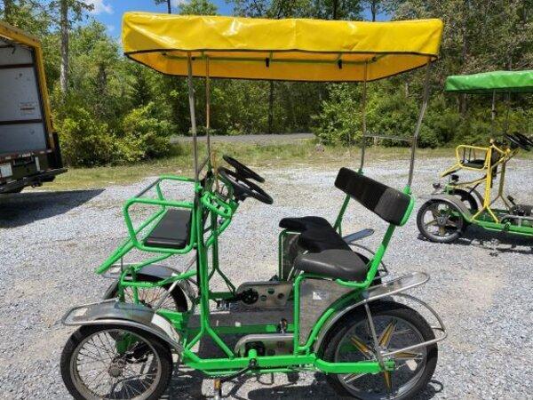 NewTecnoArt Refurbished Used NewTecnoArt Selene Sport Surrey Bike