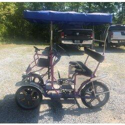 NewTecnoArt Used 2019 NewTecnoArt Selene Sport Surrey Bike (Blue & Purple w/ Blue Top)