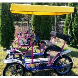 NewTecnoArt Used 2018 Selene Sport Surrey Bike 18